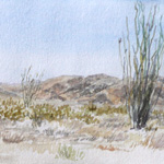 Ocotillo, Afternoon in Joshua Tree National Park